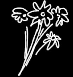 Flowertoss